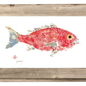Fish Aye Trading Company - Red Snapper in Driftwood Frame