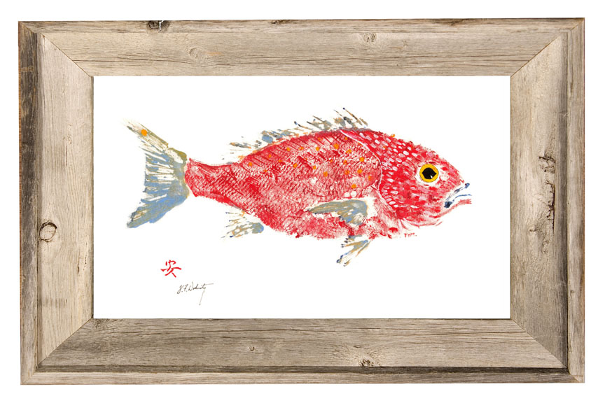 fish aye trading company red snapper in driftwood frame
