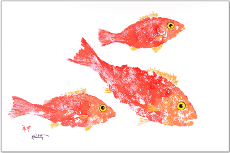 coral snapper