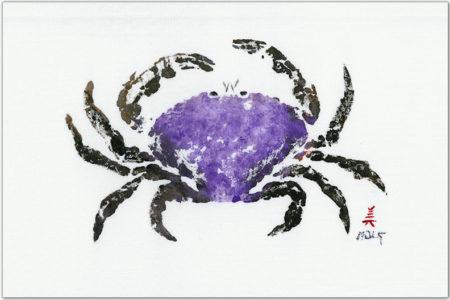 purple-dungenuss-crab